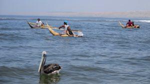 Urcia Surf School Huanchaco - Caballito de Totora (Reed Boats) Tour