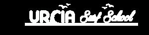 Urcia Surf School Logo Text